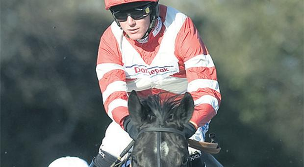 The Paul Nicholls-trained Definity, under Nick Scholfield, puts in a flying leap on the way to victory at Fontwell yesterday – Nicholls will be be hoping his Neptune Collonges can strike at Cheltenham today