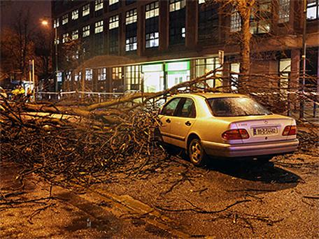 The scene on Waterloo Road in Dublin last night after a tree came down in high winds. Photo: Collins