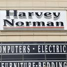 The Harvey Norman store. Photo: Damien Eagers