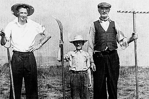Three local men – Timmy Lyons, Long Paddy and Mr Clarke – who spent many a hard and happy day saving the hay