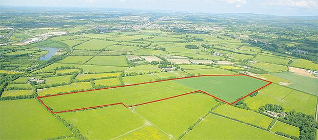A 64ac section of prime grazing land in the heart of Kildare stud country is for sale by private treaty