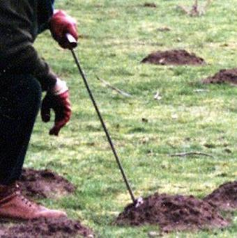 Durham County Council demanded to carry out a risk assessment before allowing staff to catch moles