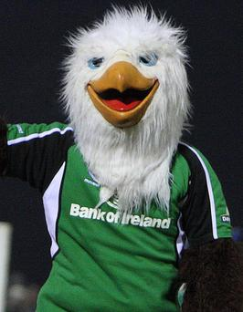 Connacht mascot Eddie the Eagle