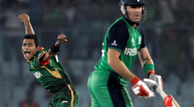 Bangladesh's Shafiul Islam celebrates after dismissing Ireland's Trent Johnston. Photo: reuters