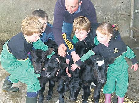 Alan Kirby and David Ryan help Ger, Ronan and Ruth Kirby hold this year's quadruplets