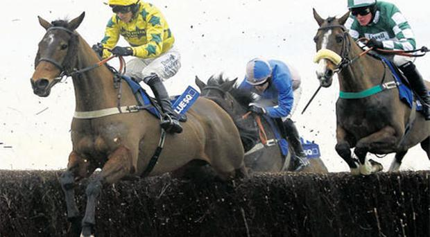 Regal Heights and jockey Paddy Brennan (left) on their way to victory at Newbury on Saturday. Photo: PA