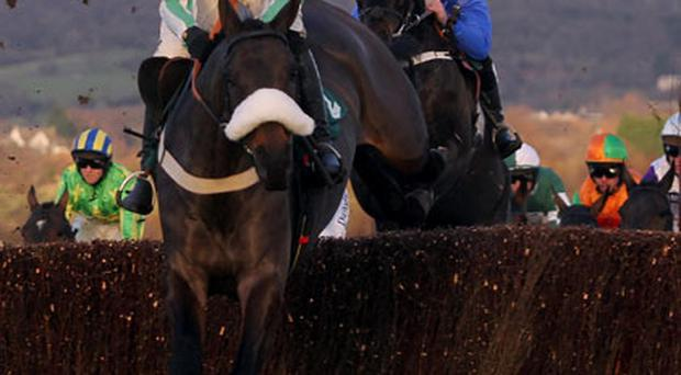 Midnight Chase and Dougie Costello are going for gold at Cheltenham next week. Photo: PA