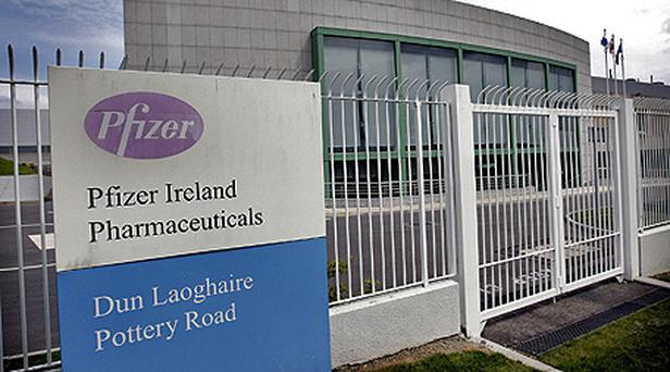 The Pfizer Ireland pharmaceuticals plant at Dun Laoghaire in Dublin. Photo: Steve Humphreys