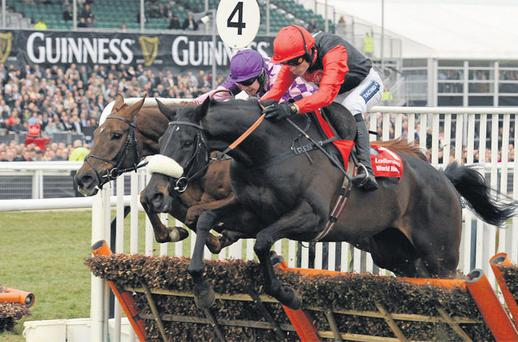'Big Buck's is probably the best staying hurdler of all time. Even at 11/8 I can't oppose him'