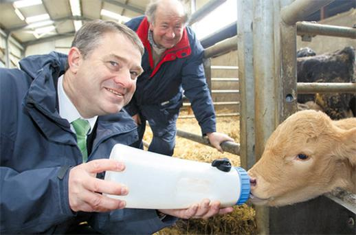 McDonald's Ireland managing director John Atherton feeding a calf with beef farmer Ray Dempsey on one of the company's farms in Co Offaly