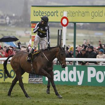 The Cheltenham Festival is one of the most important events in the racing calendar