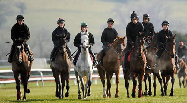 Hurricane Fly and jockey Ruby Walsh, fifth from left at Cheltenham yesterday, carry many of the Irish hopes on the opening day of the Cheltenham Festival. Photo: Matt Browne / Sportsfile