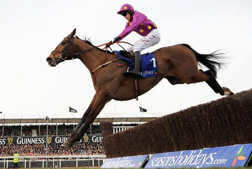 Big Zeb winner of last years Queen Mother Champion Chase. Photo: getty Images