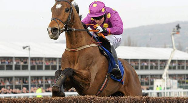 Big Zeb, here winning last year's Champion Chase under Barry Geraghty, can strike again in the feature.