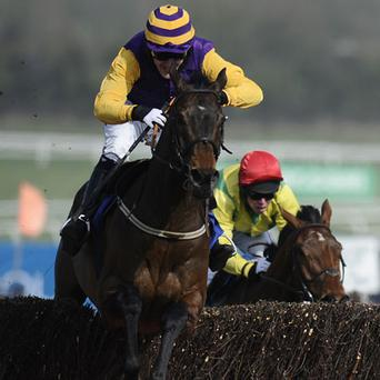 Tony McCoy rides Noble Prince clear the last to win The Jewson Novices' Steeple Chase. Photo: Getty Images