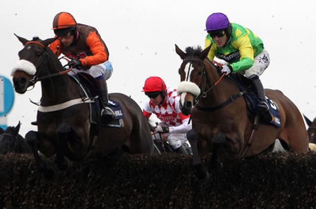 Long Run and jockey Sam Waley-Cohen (left) jump alongside Kauto Star, ridden by Tony McCoy, on their way to winning the King George in January. The two horses clash again in today's Cheltenham Gold Cup. Photo: PA