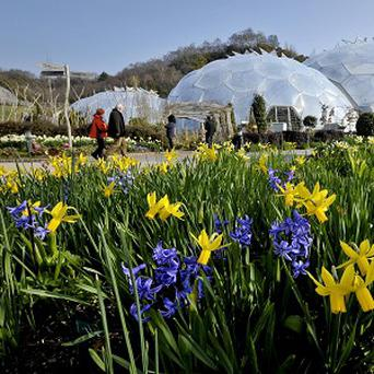 The Eden Project is one of the attractions near St Austell, which is applying to be a city