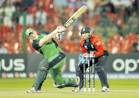 Woodland owners should cash in on Ireland's World Cup successes - such as this month's three-wicket win over England, inspired by the fastest World Cup century from Kevin O'Brien - by growing willow to export to cricket-mad nations for bat manufacturing