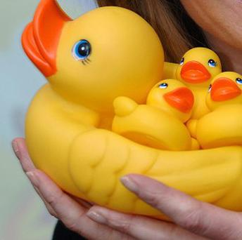 A flotilla of rubber ducks was stolen from a Chicago police academy