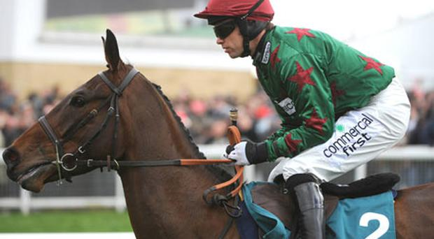 Calgary Bay, pictured here with Timmy Murphy up, will be the mount of Hadden Frost in the Aintree Grand National.