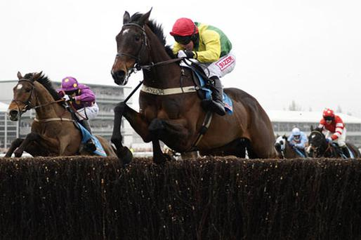 Queen Mother Champion Chase winner Sizing Europe. Photo: Reuters