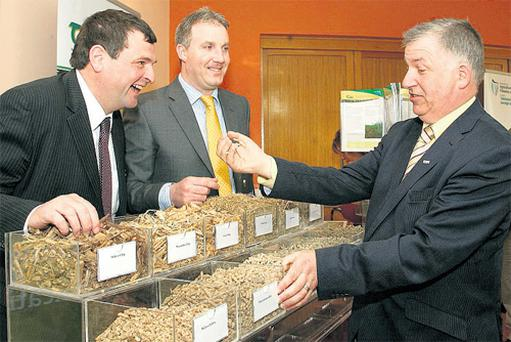 Agriculture Minister Shane McEntee; Barry Caslin, of Teagasc; and Prof Gerry Boyle, Teagasc director, share a joke at the bioenergy conference in Tullamore