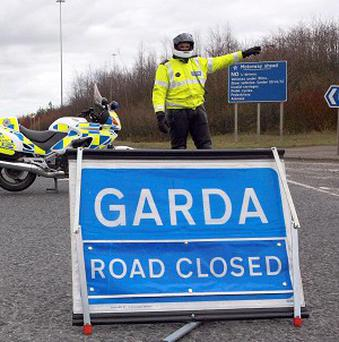 A motorist died after his car hit a horse in Kilmeaden