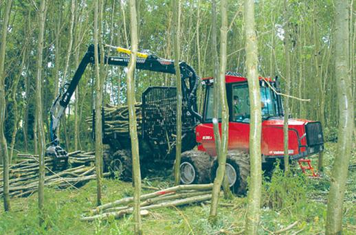 Forestry contractors working to meet the demands for timber from sawmills and wood fuel suppliers