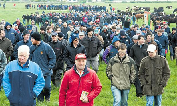 A large crowd take a walk on Teagasc's open day on the Greenfield Dairy Farm, Clara, Co Kilkenny. The main objective of this farm is to demonstrate best practice in the design, construction and operation of a low-cost, grass-based, large-scale milk production system within the constraints of commercial farm practice