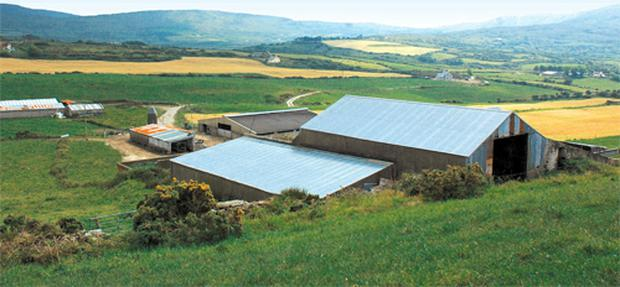 This dairy farm is capable of carrying a herd of more than 100 cows, with slatted cubicle housing for 200 animals, while other facilities include a new swing-over-arms 20-unit milking parlour