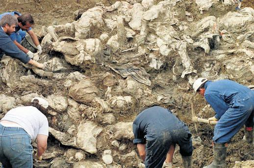 GRUESOME TASK: International War Crimes Tribunal investigators in September 1996 clear away soil and debris from dozens of Srebrenica victims buried in a mass grave near the village of Pilica