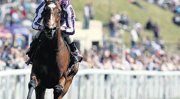 St Nicholas Abbey, here winning at Chester, can initiate an Epsom double for Ballydoyle by landing the Coronation Cup