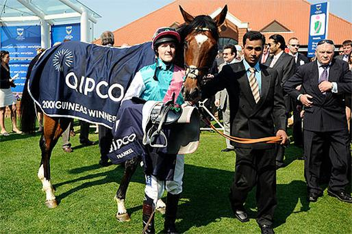 Frankel after winning The Qipco 2000 Guineas