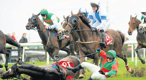 Shay Barry and Excellent As Usual part company during the Tote Jackpot Races 3 to 6 Handicap Hurdle at Ballybrit yesterday