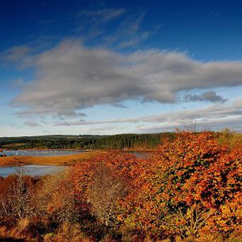 An autumnal scene in Kielder Water, Northumberland
