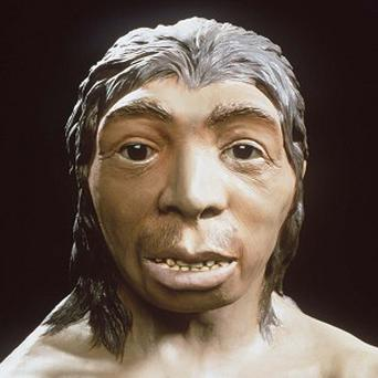 The human race's immune system was strengthened by 'Neanderthal nookie', experts said