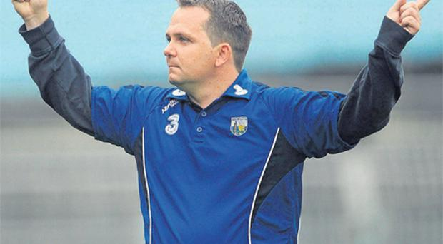 Davy Fitzgerald celebrates after John Mullane scored Waterford's third goal against Limerick as Donal O'Grady watches on during their Munster SHC clash in June. Both counties are now looking for different managers for next season's campaign