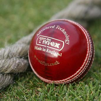 A mother is alleged to have stormed a cricket ground complaining about balls landing in her garden