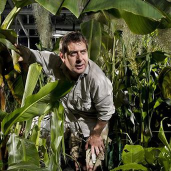 Professor Iain Stewart suffered 'blinding headaches' after sealing himself in an airtight foliage-filled chamber in a test to show the power of plants