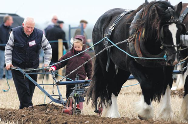 Joe Fahy with his grandneice Roisin Lardner as he takes part in the Special Horse Plough Class