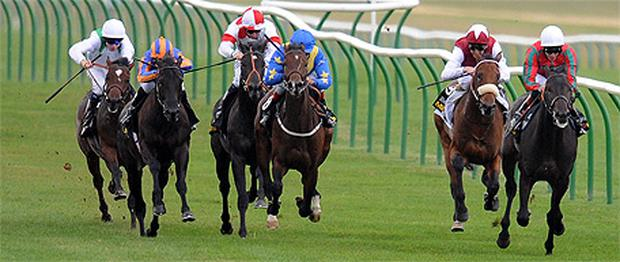 Crius, with Richard Hughes up (right), goes on to win the Somerville Tattersall Stakes at Newmarket yesterday