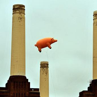 Pink Floyd's pig flies over Battersea Power Station