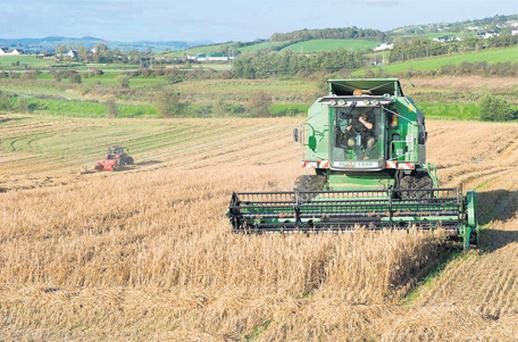 Contractor Trevor McClean (on the combine) and William Brown (baling) salvage crops from a disastrous harvest in Donegal