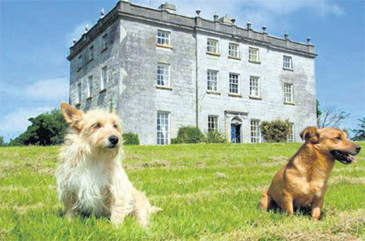This historic €1.75m manor house even has it's own benign resident ghost, writes Valerie Shanley