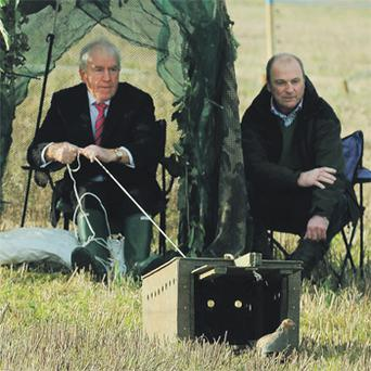 Minister Jimmy Deenihan and farmer Pat Rooney releasing grey partridges in Fingal, north Co Dublin yesterday