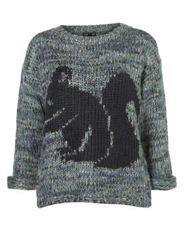 Jumper Available from Topshop priced at €72