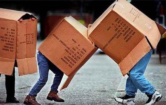Cardboard jousting - could this craze be sweeping the nation?