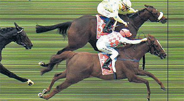 A copy of the Melbourne Cup photo-finish which shows the nostril of Dunaden marginally ahead of Red Cad
