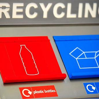 Items including dead pets and sex toys have been placed in recycling bins, a council revealed