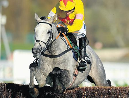 Al Ferof and Ruby Walsh ease clear of their rivals at Cheltenham yesterday